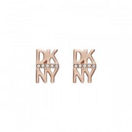 BRINCOS DKNY 5520005
